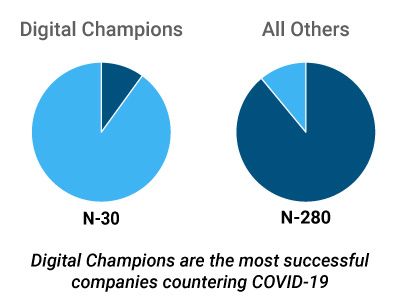 Comparing All Companies and Digital Champions